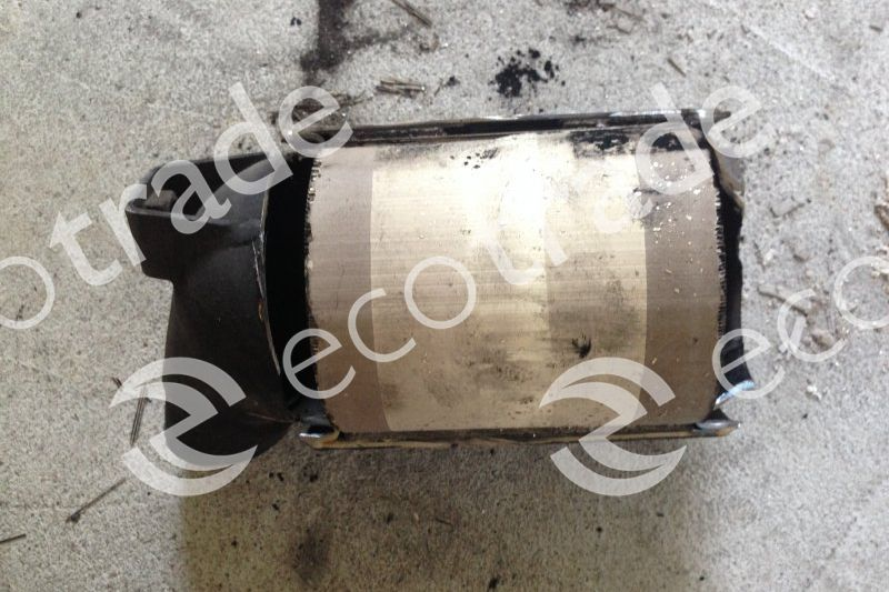 Renault-8200169763A H8200169758Catalytic Converters